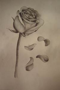 Rose with falling petals | Tattoos | Pinterest | The o ...
