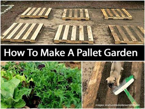 pallet gardening how to create pallet garden