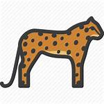 Icon Leopard Cheetah Feline Guepard Icons 512px