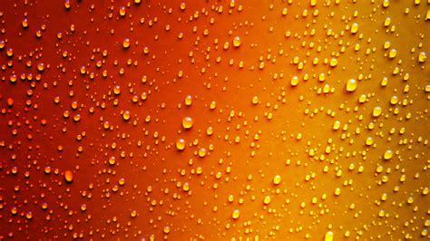 red yellow dew drop wet  laptop full hd p
