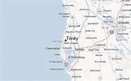 Trinity, Florida Location Guide