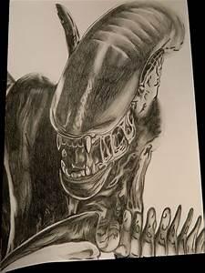 AVP - How to draw Alien - Xenomorph Drawing from Alien VS ...
