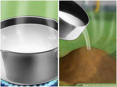 how to get rid of ants on patio plan 5 ways to get rid of ants outside wikihow