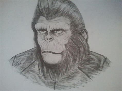 Planet Of The Apes By Paulwk On Deviantart