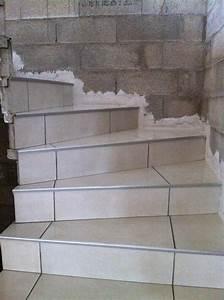 carrelage escalier exterieur carreler un avec newsindoco With carreler un escalier exterieur