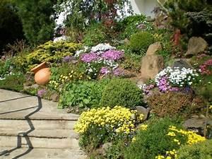steingarten planen anlegen und tipps mein schoner garten With garten planen mit pflanzenlampen für zimmerpflanzen