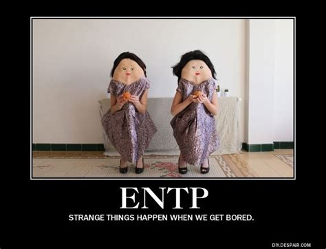 Entp Memes - 165 best images about misunderstood me on pinterest personality types intj and intp