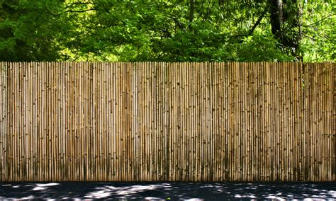 bamboo fencing free images landscape forest wood wall walkway natural divider garden picket fence