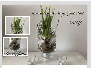 Frühlingsdeko Im Glas : fr hlingsfloristik selber machen glas gef llt mit duftender hyazinthe youtube deko ~ Orissabook.com Haus und Dekorationen
