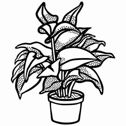 Potted Plant Clip Lineart Onlinelabels Svg