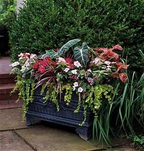 Window Box Designs For Full Sun - WoodWorking Projects & Plans
