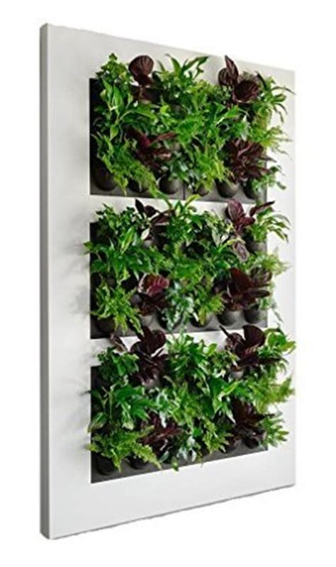 Vertical Garden Solutions by Indoor Vertical Garden Solutions For Your Wall The High