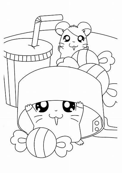 Hamtaro Kleurplaten Ausmalbilder Kleurplaat Coloring Hamster Colouring