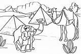 Coloring Pages Camel Desert Drawing Egypt Caravan Camels Egyptian Printable Pyramids Scene Colouring Animal Sketch Sahara Printables Template Cute Transport sketch template