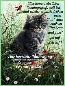 Lustige Bilder Sonntag : pin von dorothea rothmann auf wochentage pinterest guten morgen guten morgen gruss und ~ Frokenaadalensverden.com Haus und Dekorationen