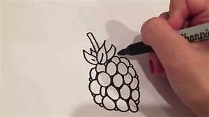 Drawing A Raspberry - YouTube