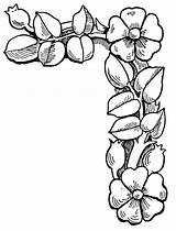 Clip Floral Corner Border Flower Cliparts Borders Flowers Clipart Coloring Corners Bing Pages Attribution Forget Link Don sketch template