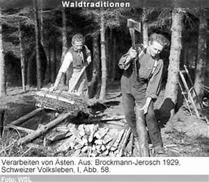 Holzasche Als Dünger : raonline edu kultur und geschichte schweizer wald traditionelle waldnutzungen zeitzeugen ~ Whattoseeinmadrid.com Haus und Dekorationen