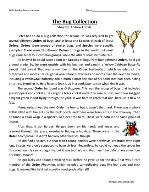 bug collection fifth grade reading comprehension worksheet
