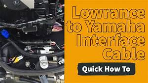 Yamaha Command Link Rigging Wiring Diagram