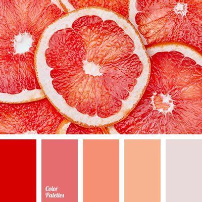 red grapefruit paint color best 25 red color palettes ideas on pinterest red color