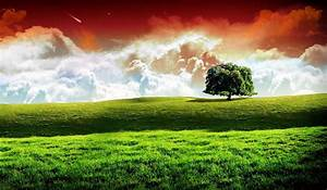 Indian Flag Images, HD Wallpapers [Free Download ...