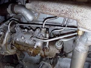Pompe Injection Cav 3 Cylindres : massey 140 purge pompe injection cav ~ Gottalentnigeria.com Avis de Voitures