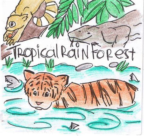 tropical rainforest animals drawing tropical rainforest