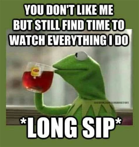 Sitting Frog Meme - 541 best images about what kermit says on pinterest frogs free website and business meme