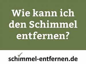 Grüner Schimmel An Der Wand : schimmel an der wand youtube ~ A.2002-acura-tl-radio.info Haus und Dekorationen