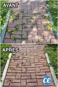 Comment Enlever Les Mauvaises Herbes : comment liminer les mauvaises herbes entre les dalles ~ Melissatoandfro.com Idées de Décoration