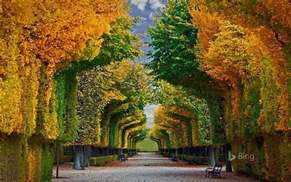 Bing Desktop Vienna Austria Palace Schonbrunn Wallpapers