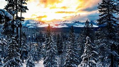Winter Forest Mountains Snow Background Wallpapers 1080p
