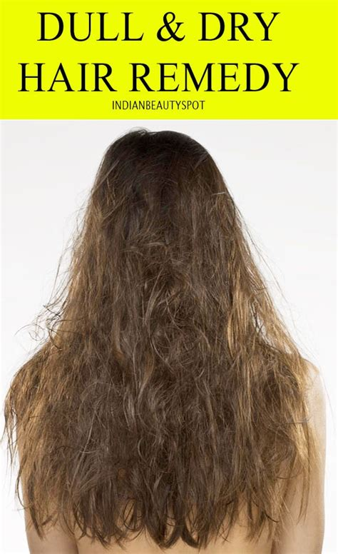Hair Looks Dull by 17 Best Ideas About Dull Hair On Scalp