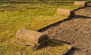 Spritzmittel Gegen Unkraut Im Rasen : rasen entfernen so gehen sie vor ~ Michelbontemps.com Haus und Dekorationen