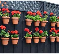 Easy Container Garden Ideas  Backyard Projects  Birds And Blooms