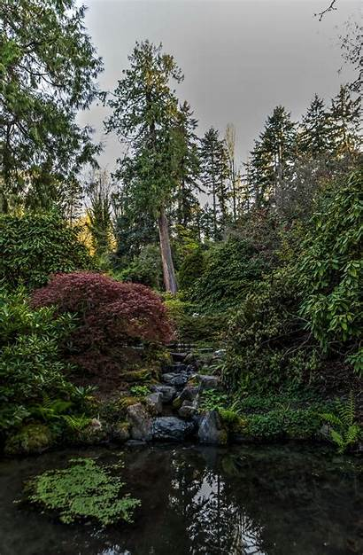 Kubota Garden Seattle Amazing Japanese Gate Adventures