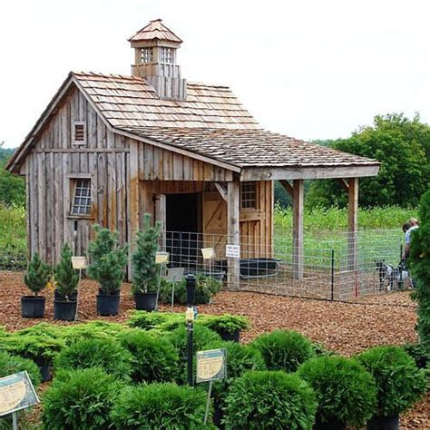 chicken coop ideas congratulations here 39 s a chicken coop boxwood avenue