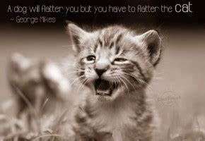 Cat And Dog Quotes. QuotesGram