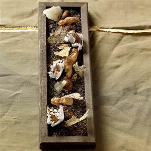 Johannes King Sylt : kleine kartoffelvariation tolle rezepte von johannes king johannes king ~ Orissabook.com Haus und Dekorationen