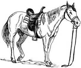 realistic horse coloring pages animals printable coloring pages - Coloring Pages Horses Realistic
