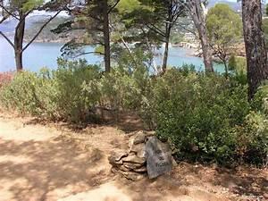 domaine du rayol le jardin des mediterranees rayol With jardin rayol canadel