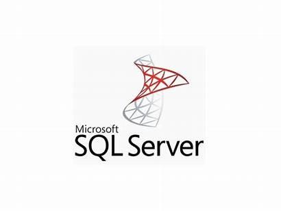 Server Sql Microsoft Hp Psd Pack Rebrand