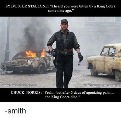 Stallone Meme - 25 best memes about the expendables 2 the expendables 2 memes