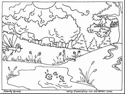 Creation Coloring Pages Printable Days Pdf Getcolorings