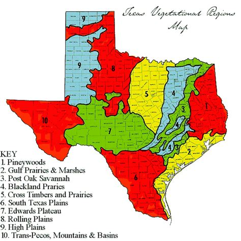 Camryns Blog Texas Ecoregion Mountains And Basins