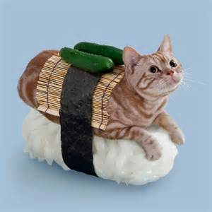 sushi cats technabob on reddit
