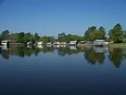 Panoramio - Photo of Scenic Lake Murvaul