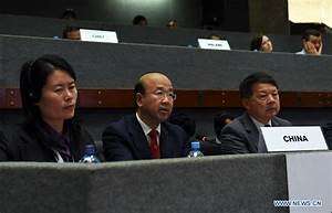 China says to help developing nations implement UN SDGs ...