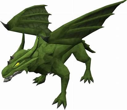 Dragon Dragons Runescape Rs3 Wikia Fandom Scale
